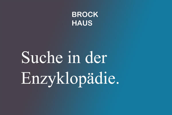 Brockhaus digital